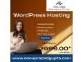 wordpress-hosting-india-small-0