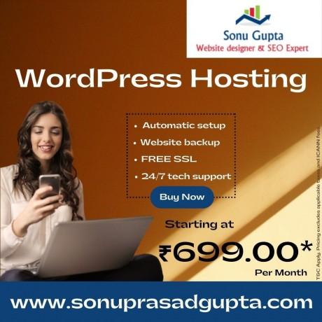 wordpress-hosting-india-big-0