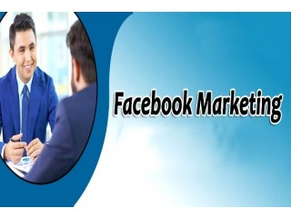 Facebook ads Campaign and Instagram Marketing